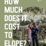 "A small image of an eloping couple in a vineyard with the overlay text ""How Much"